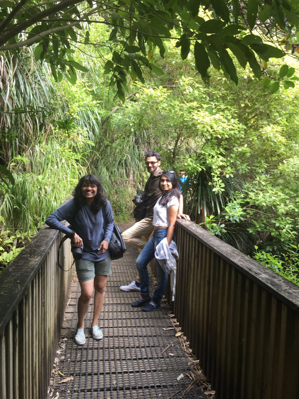 Indian internship students exploring evergreen nz