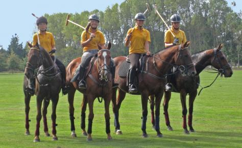 polo tournament 1 4 12 2
